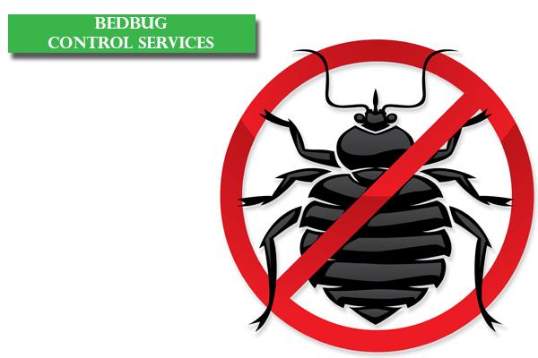 Best Bed Bug Control services in Bangalore, Reliable Bed Bugs Control