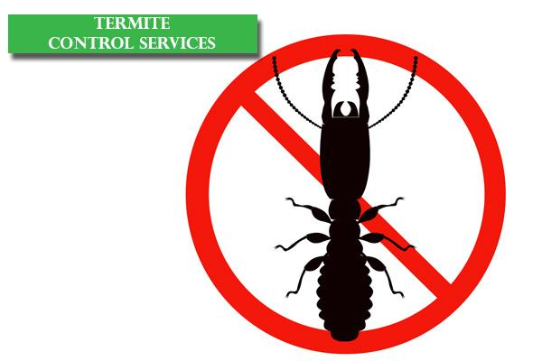 Best Pest Control Services in Bangalore, Reliable Pest Control Services